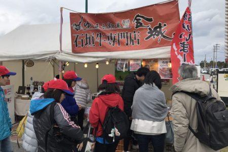 沖縄にプロ野球キャンプの季節がやってきた!